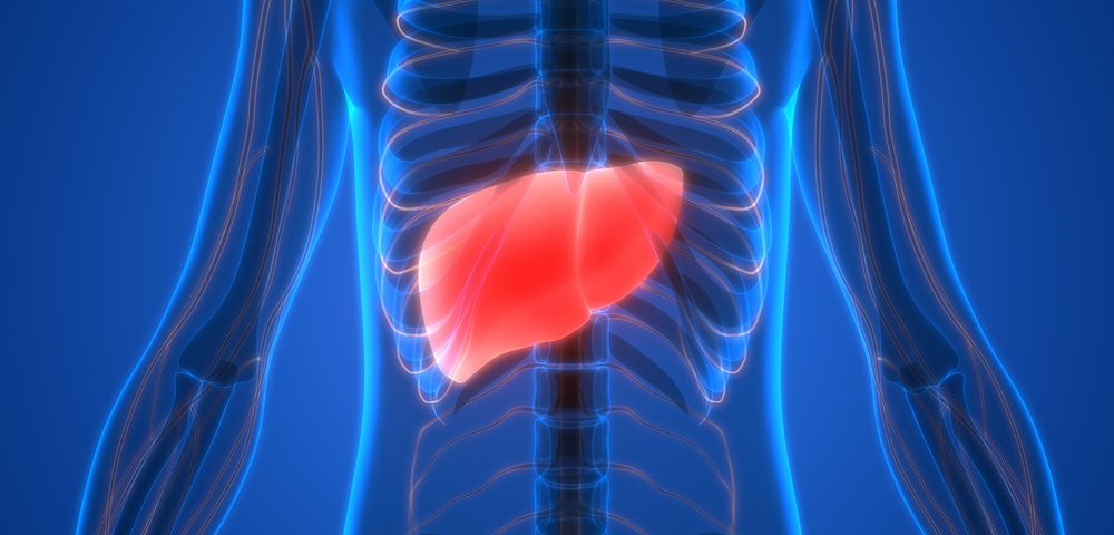 Oral Therapy, VK2809, Shows Potential in Treating NASH-related Fibrosis in Early Study